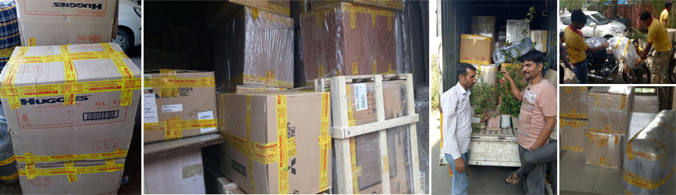 DSL Express Movers and Packers - Mumbai