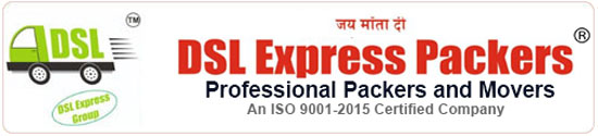 DSL Express Packers logo